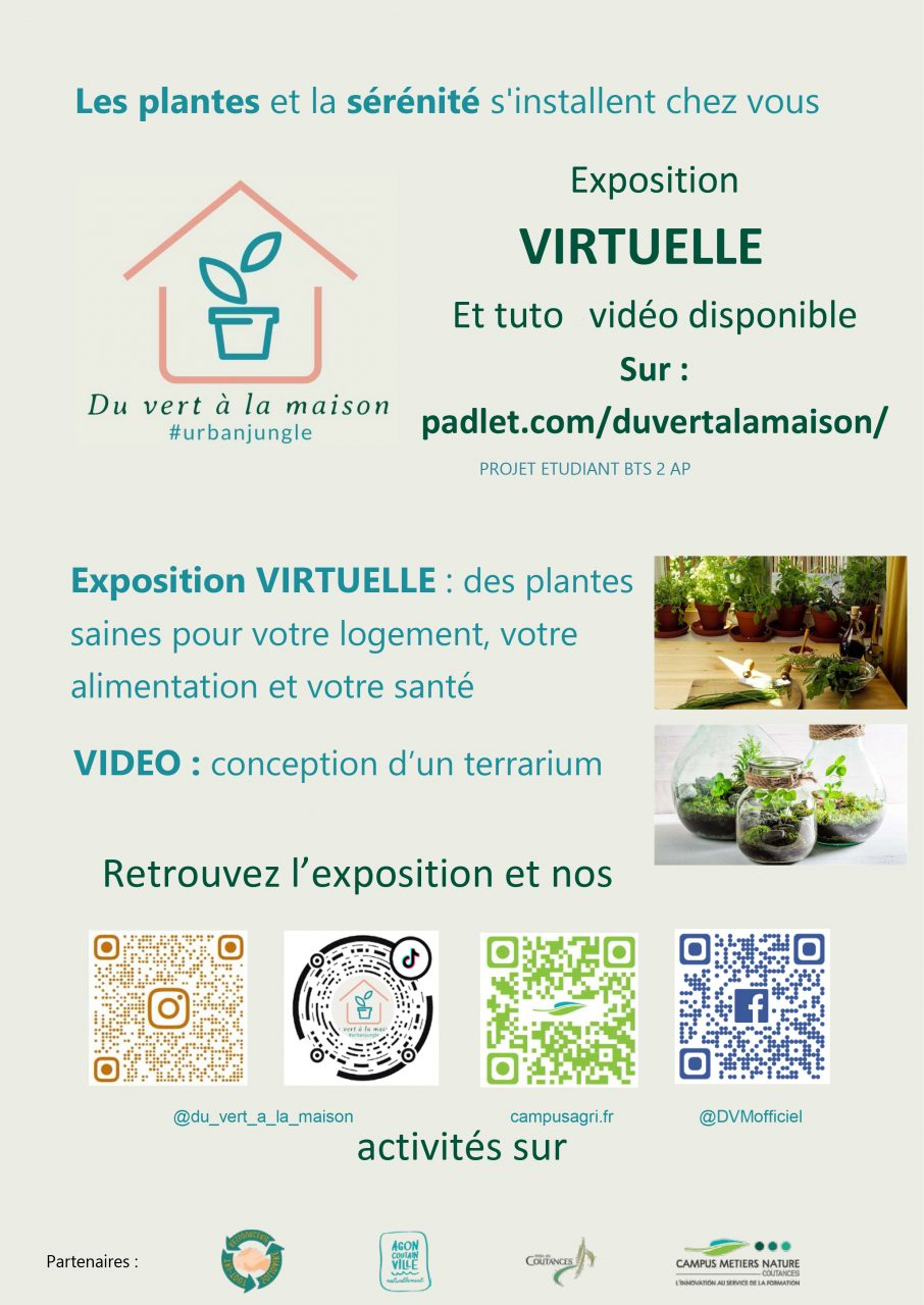 Exposition virtuelle : des plantes saines pour votre logement, votre alimentation et votre santé – 30 janvier 2021